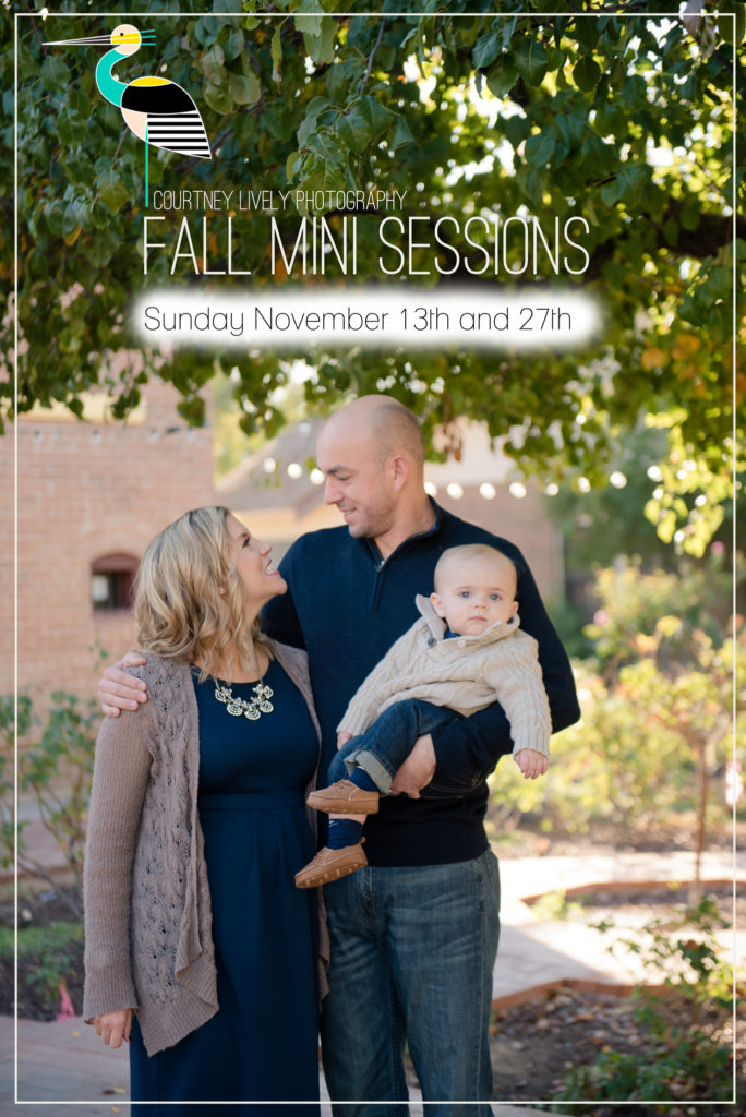 2016 Phoenix Fall Mini Sessions with Courtney Lively Photography